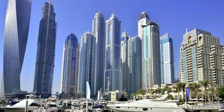 Dubai Marina i De Forenede Arabiske Emirater.