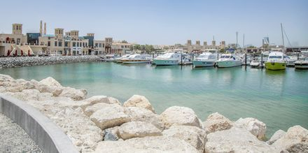 Dubai Al Barsha & Barsha Heights