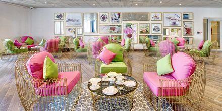 Te-Lounge på Hotel Dukes The Palm på Dubai Palm Jumeirah
