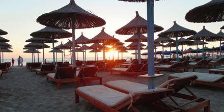 Stranden i Durres Riviera, Albanien.