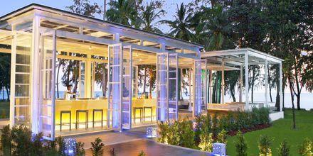 Malati bar på Hotel Dusit Thani Beach Resort i Klong Muang på Krabi, Thailand.