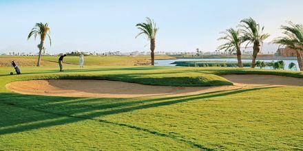 Steigenbergs 18-hullers golfbane ved El Gouna, Egypten.