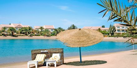 Hotellets strand på Mövenpick Resort & Spa i El Gouna, Egypten