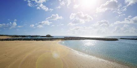 Stranden ved Elba Sara på Fuerteventura, De Kanariske Øer
