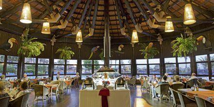 Restaurant på Elba Sara på Fuerteventura, De Kanariske Øer