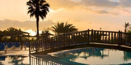 Poolområde på Elba Sara på Fuerteventura, De Kanariske Øer