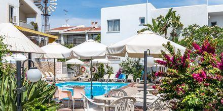 Hotel Eligonia i Ayia Napa, Cypern