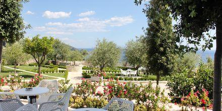 Have på Hotel Elysium i Dhermi, Albanien.