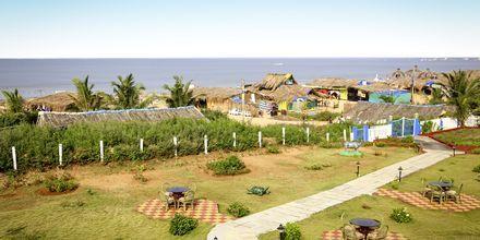 Udsigt fra Hotel Empire Beach Resort i Det Nordlige Goa, Indien.