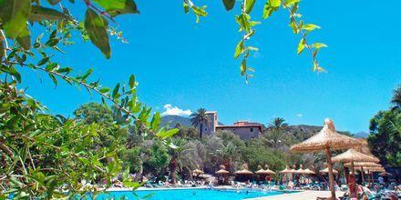 Poolområde på Hotel Es Port i Puerto Soller på Mallorca, Spanien