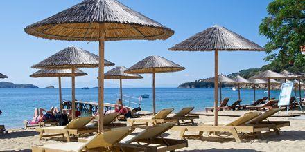 Stranden ved hotel Esperides på Skiathos, Grækenland.