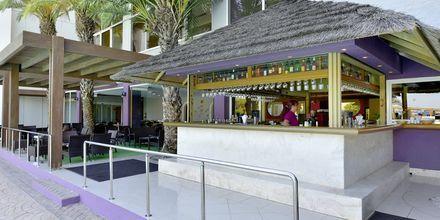 Bar på Esperides Beach Family Hotel på Rhodos, Grækenland.