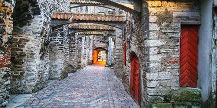 Gaden Katarina Käik i Tallinn, Estland.