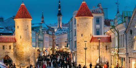 Virusporten, der fører ind til Tallinns gamle by.