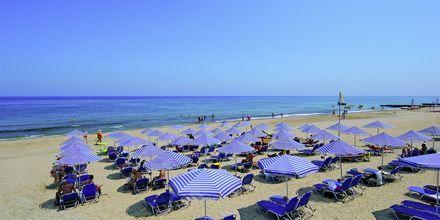Strand ved Eva Bay på Kreta