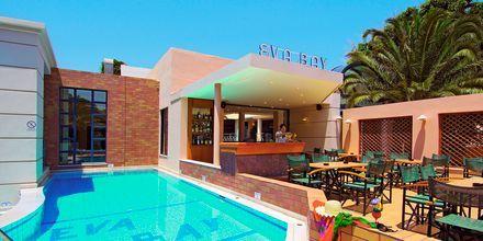Pool og poolbar på Eva Bay på Kreta