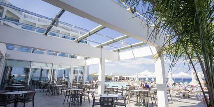 Poolbar på Hotel Evalena Beach i Fig Tree Bay, Cypern.