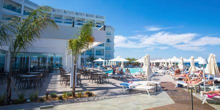 Poolområde på Hotel Evalena Beach i Fig Tree Bay, Cypern.