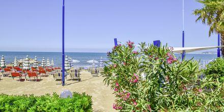 Stranden ved Fafa Apartments, Durres Riviera, Albanien.