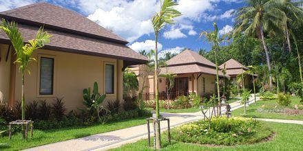 Dobbeltværelse i bungalow på Fair House Villas & Spa på Koh Samui i Thailand.