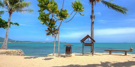 Strand ved Fair House Villas & Spa på Koh Samui i Thailand.