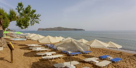 Stranden på hotel Faros i Kato Stalos, Kreta