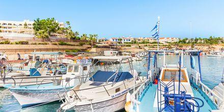 Havn i Fig Tree Bay, Cypern
