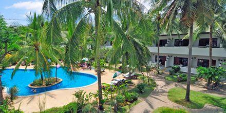 Poolområde på Hotel First Bungalow Beach Resort på Koh Samui, Thailand.