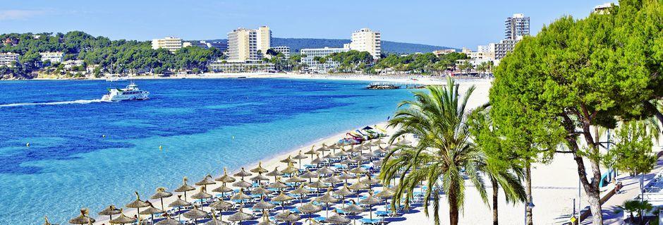 Poolområde på Hotel Flamboyan Caribe på Mallorca, Spanien