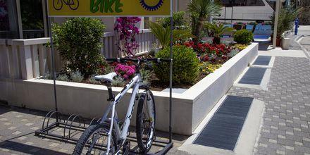 Cykeludlejning på Hotel Flora i Tucepi, Kroatien