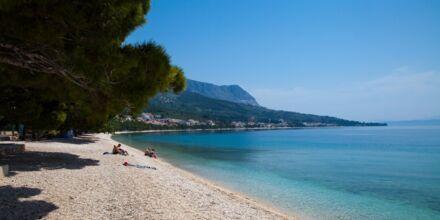 Stranden nedenfor Hotel Flora i Tucepi, Kroatien