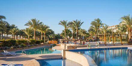 Poolområdet på Fort Arabesque Resort, Spa & Villas