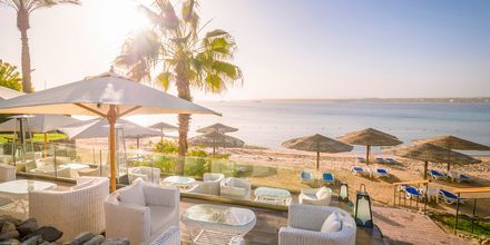 Stranden ved Fort Arabesque Resort, Spa & Villas