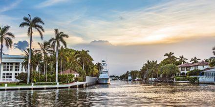 Kanalsystemet i Fort Lauderdale opleves bedst med bådtaxi.