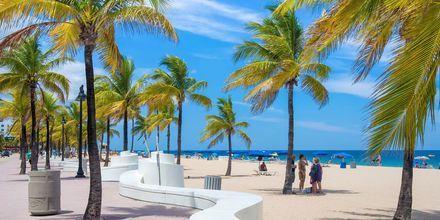 Stranden i Fort Lauderdale i Florida, USA strækker sig flere kilometer.