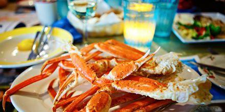 Smag fisk og skaldyr på din tur til Fort Lauderdale.