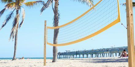 Dania Beach i Fort Lauderdale i Florida, USA er en familievenlig og populær strand.
