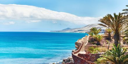 Fuerteventuras smukke kystlinje.