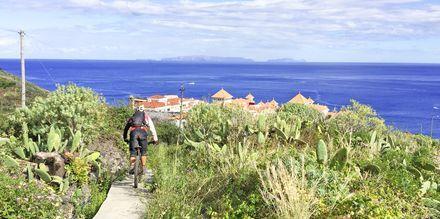 Cykling på Madeira i Portugal