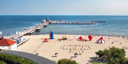 Kystbyen Sopot ligger blot 20 min fra Gdansk