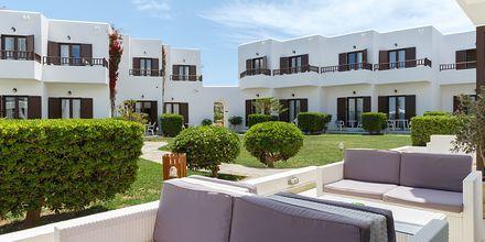 Hotel Geraniotis Beach i Platanias, Grækenland