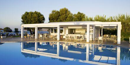 Poolbar på Geraniotis Beach i Platanias på Kreta i Grækenland