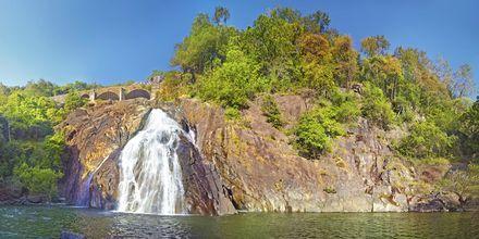 Dudshagar Falls.