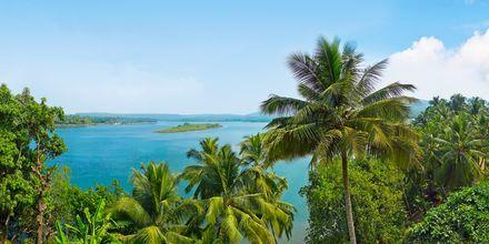 Det Nordlige Goa, Indien