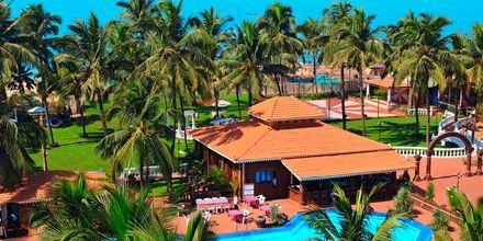 Poolområdet på Goan Heritage i Goa i Indien.
