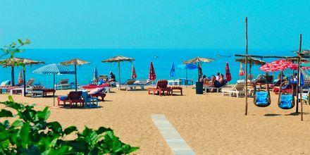 Stranden ved Goan Heritage i Goa i Indien.