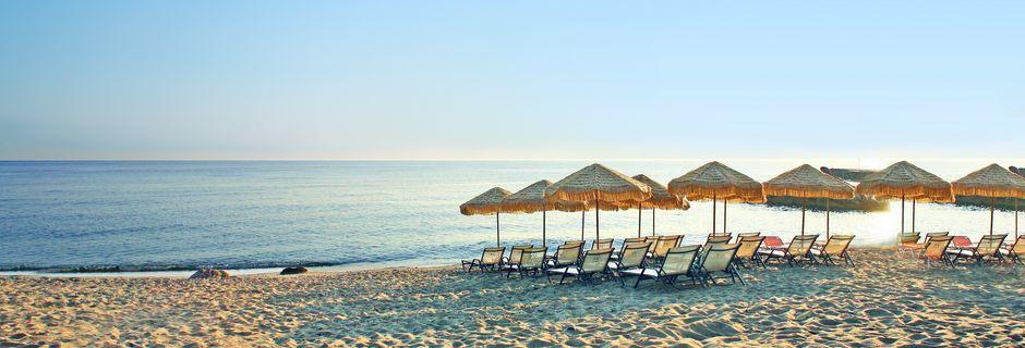 Hotelstrand ved Hotel Golden Beach i Hersonissos på Kreta, Grækenland.
