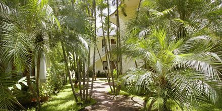 Golden Beach Resort i Ao Nang, Krabi i Thailand.