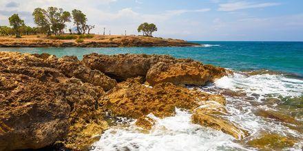 Klipperne ved Gouves på Kreta.
