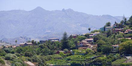 Byen Bandama